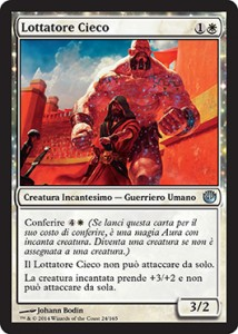 Lottatore Cieco / Sightless Brawler